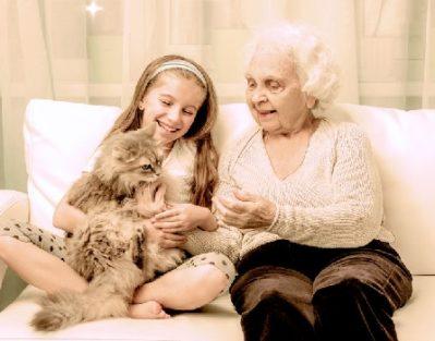 senior-care-in-home
